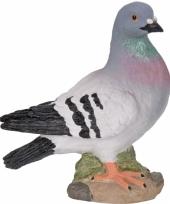 Grijze duiven beeldjes