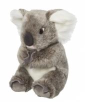 Grijze koala knuffel 22 cm