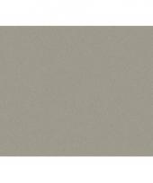 Grijze vellen karton 50x70 cm