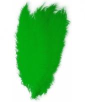 Groene grote sier veertjes 50 cm