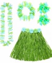 Groene hawaii verkleedset voor dames