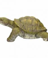 Groene schildpad tuinbeelden 39 cm