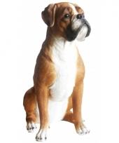 Groot polystone beeld boxer hond 47 cm