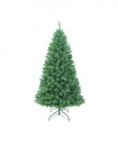 Grote alaskan fir kerstboom 150 cm