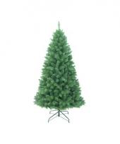 Grote alaskan fir kerstboom 180 cm