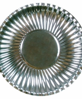 Grote bbq borden zilver 29 cm