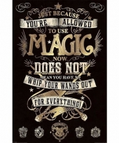 Grote poster harry potter magie 61 x 91cm