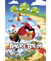 Grote posters angry birds