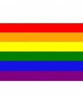 Grote vlag regenboog 150 x 240 cm