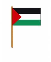 Handvlaggetje palestina