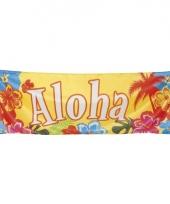 Hawaii versiering banner aloha