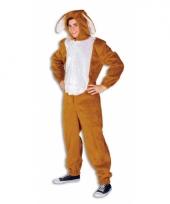 Hazen outfit voor volwassenen