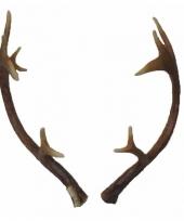 Herten gewei 40 cm