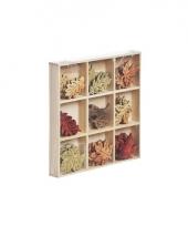 Hobby herfstblaadjes van hout 3cm