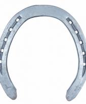 Hoefijzerspel metalen hoefijzer 1x