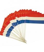Holland zwaaivlaggen plastic