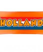 Hollandse banner met leeuw 80 cm