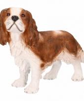 Hondenbeeld king charles hond bruin