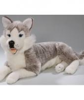 Husky honden knuffels 42 cm