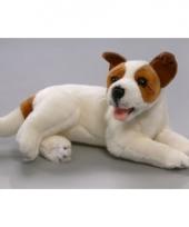 Jack russell hond knuffel 30 cm