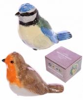 Kado zoutstelletje voor vogelaars