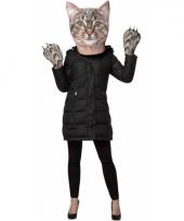 Katten hoofd met handschoenen