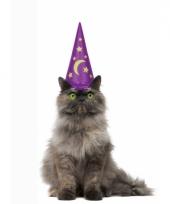 Kattenvrouwtje kado hoed voor katten