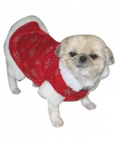 Kerst honden outfit