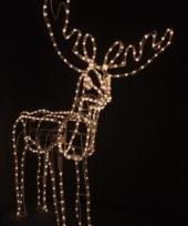 Kerst rendier met beweging en licht