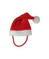 Kerstmuts voor poezen