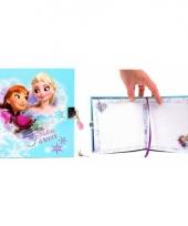 Kinder dagboek frozen