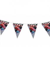 Kinderfeest formule 1 vlaggenlijn 3 meter