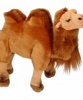 Knuffeltjes kameel 26 cm