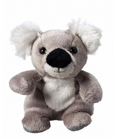 Koala knuffeltje 11 cm met label voor boodschap