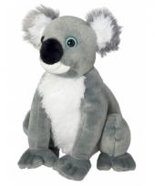 Koala knuffeltje 26 cm