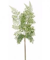 Kunstplant groen bosvaren takje 58 cm