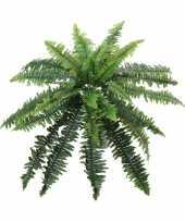 Kunstplant krulvaren 41 cm