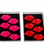 Kusjes magneten 6 stuks