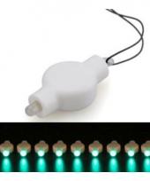 Lampionnen led verlichting groen