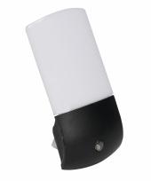 Lampje met sensor 11 cm 2 pack
