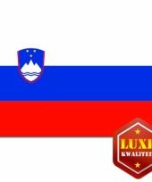 Landen vlaggen van sloveni