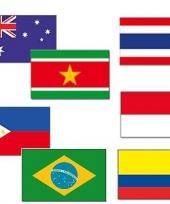 Landenvlaggen deco tropical