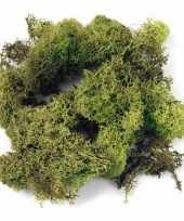 Lichtgroene decoratie mos 10122523