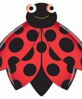 Lieveheersbeestje vlieger 76 x 112 cm