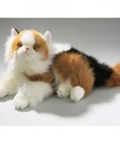 Luie liggende gevlekte katten knuffel