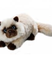 Luie liggende perzische katten knuffel