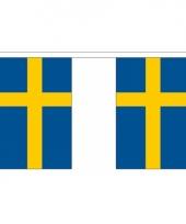 Luxe zweedse vlaggenlijn 3 meter