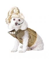 Madonna kostuum voor honden