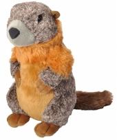 Marmot knuffeltje 30 cm