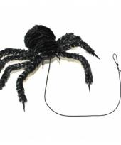 Mega halloween spin van 50 cm
